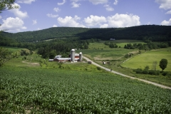 road to bovina 2011
