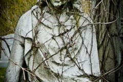 cemetery.zoom-104