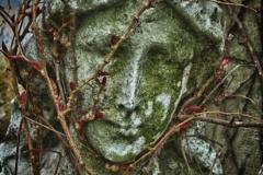 cemetery.zoom-106